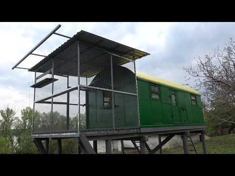Звенигородский голубедром. Прием голубей 04.05.2019
