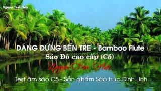 Sáo trúc: DÁNG ĐỨNG BẾN TRE - Sáo trúc Nguyễn Trân | Bamboo Flute Cover