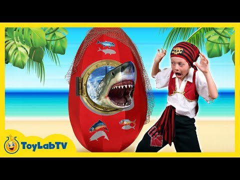 GIANT SHARK EGG SURPRISE OPENING w/ Shark Toys & Sharky vs Pirate Aaron & LB Fun Kids Video ToyLabTV