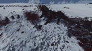 Северная Война ● Прохождение Клан Ангрунд ● Total War Warhammer #21