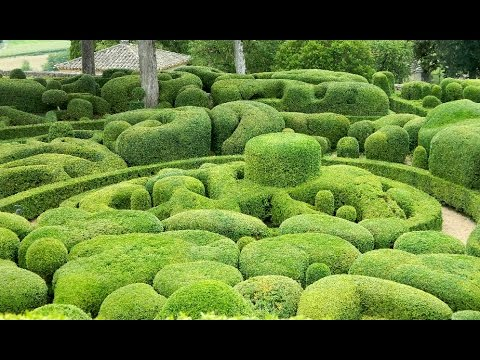French Garden Visit - Marqueyssac, Dordogne
