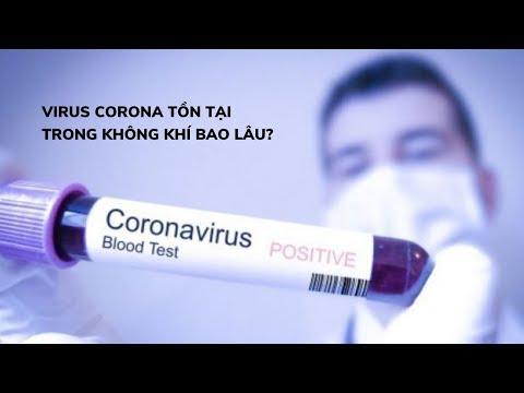 Virus corona chủng mới tồn tại bao lâu trong không khí, trên nhựa và inox?