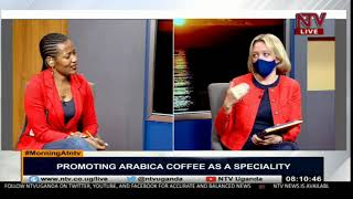 Promoting Arabica coffee as a specialty | MORNING AT NTV