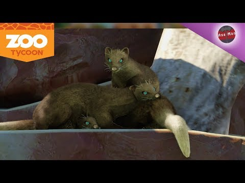 THE FINAL DAY AT THE PARK   ZOO TYCOON   PC GAMEPLAY EP 7