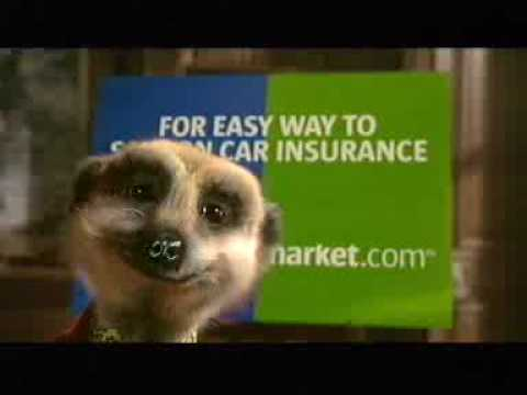 Official Compare The Meerkat Advert By Aleksandr Orlov Youtube