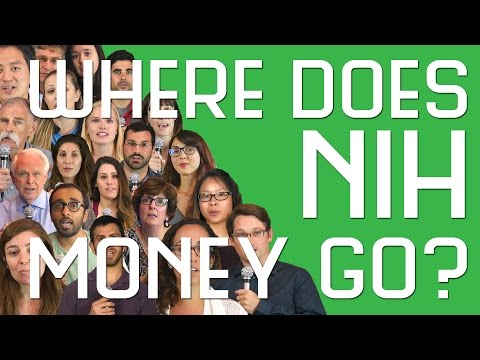 UCSD Scientists Explain: Where Does NIH Money Go?