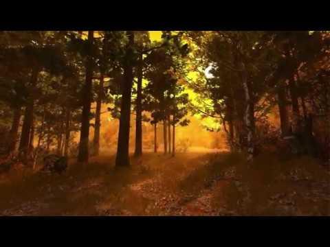 Изображение предпросмотра прочтения – ДанилВаракин читает произведение «Славная осень» Н.А.Некрасова