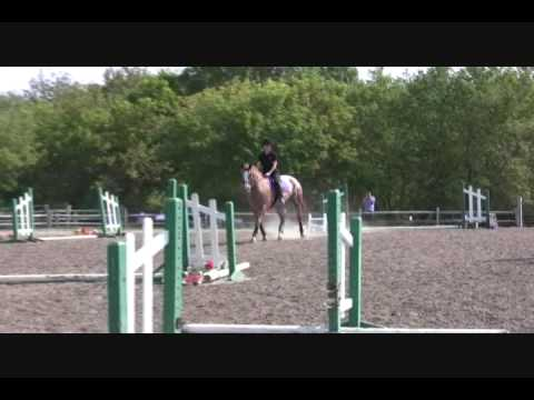 Nikki & Jersey – North Run Farm – Ground Poles