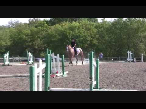 Nikki & Jersey – North Run Farm – Ground Poles