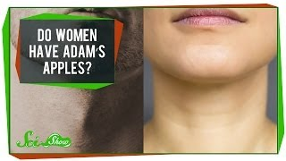 Do Women Have Adam