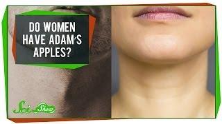 「女性には喉仏がない」と思っている人に教えてあげたい豆知識
