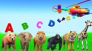 Learn ABC Alphabets Song With Wild Zoo Animals For Kids