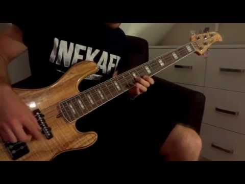 Red Hot Chili Peppers - Wet Sand (bass cover)