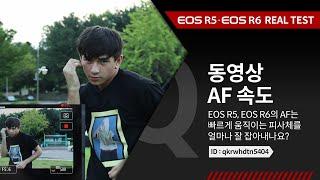 캐논 EOS R5 &a…