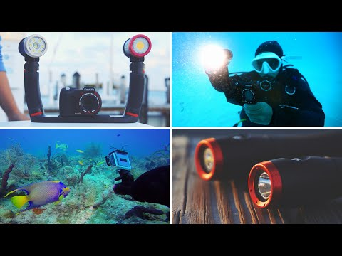 SeaLife Sea Dragon Underwater Lighting | Diving in Bimini with Sea Dragon 2500, 2100 & Mini 650