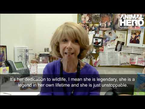 Lifetime Achievement Award  Virginia McKenna