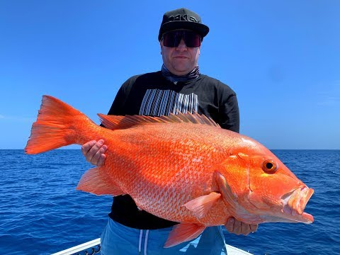 Hervey Bay Monster Nannygai!!! Caught In The Bay... Fraser Island Fishing