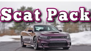 homepage tile video photo for 2020 Dodge Charger Scat Pack: Regular Car Reviews