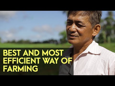PROFITABLE & EFFICIENT FARMING | Crop Farming, Duck Raising, Salted Egg Production