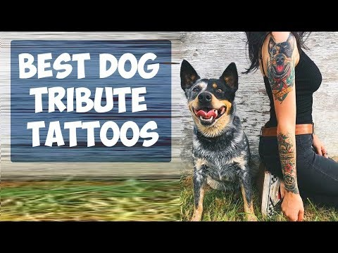 Best Dog Tribute Tattoos