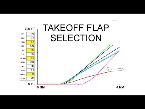 TAKEOFF FLAP SELECTION