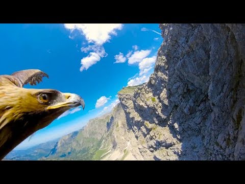 [10 Hours] Through an Eagle's Eyes in the Alps - Video & Audio [1080HD] SlowTV
