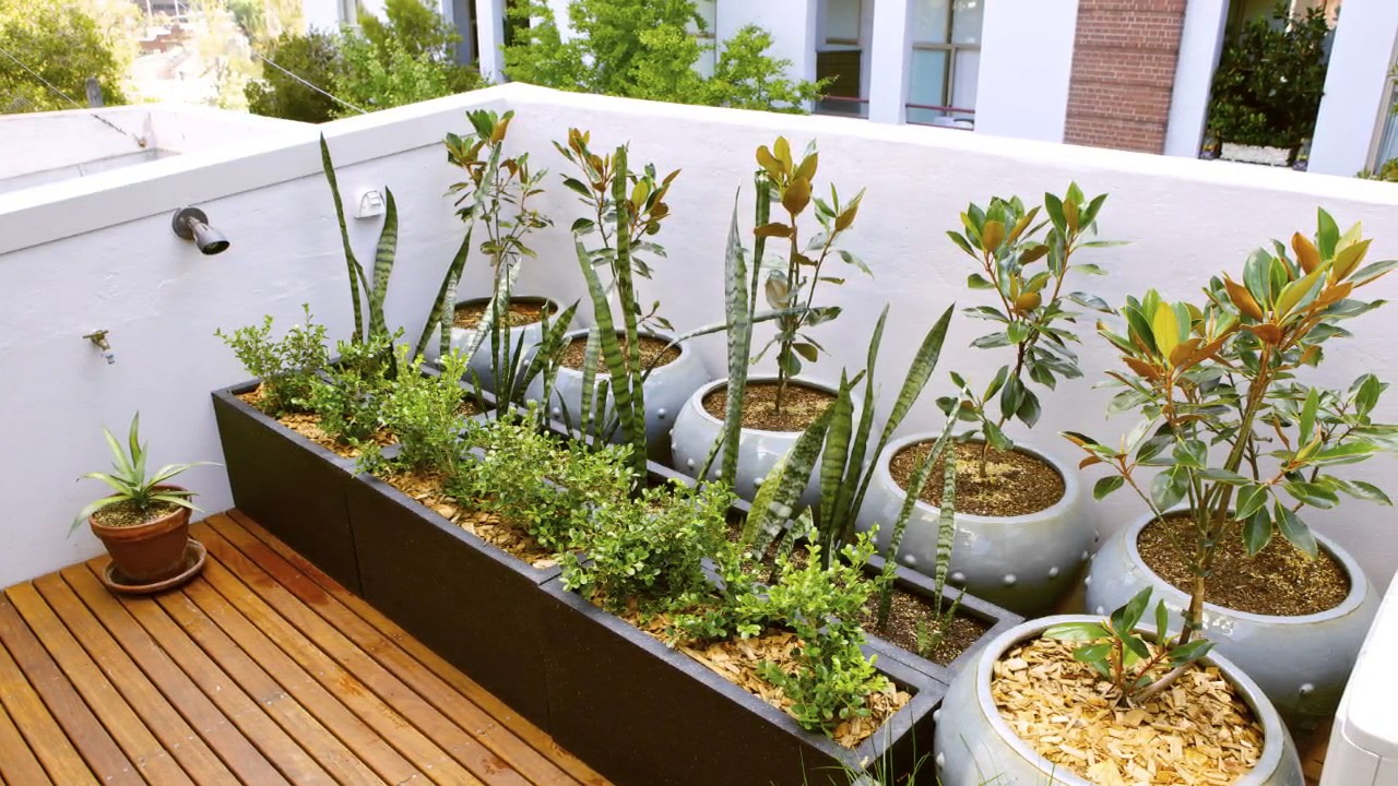 Rooftop Garden at Home Design Ideas & Rooftop Garden at Home Design Ideas - YouTube