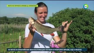 Один в поле - воин: фермер-отшельник возрождает российскую глубинку - МИР24