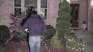 Putting Up Christmas Lights!