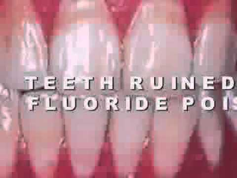 Fluoride Health... Royal Jelly