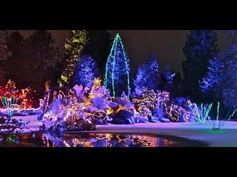 City Lights   Festival Of Lights At VanDusen Botanical Gardens   YouTube