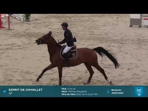 ESPRIT DE CHIVALLET