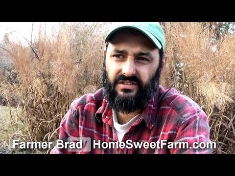 Interview with Farmer Brad about S 510 Food Safety Modernization Act