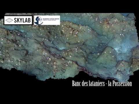 Subsea photogrammetry Reunion Island survey coral