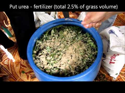 Video showing the preparation for animal feed fermentation