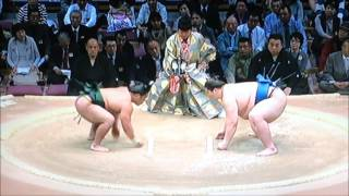 大相撲九州場所 平成28年11月17日 満員御礼 Sumo -Kyushu Basho.