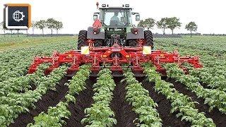 НЕВЕРОЯТНЫЕ Фрукто-уборочные МАШИНЫ. Удивительная Сельхозтехника