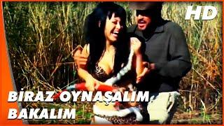 Turist Ömer Yamyamlar Arasında  Beyaz Panter, Ömer ile Oynaşıyor  Türk Komedi Filmi