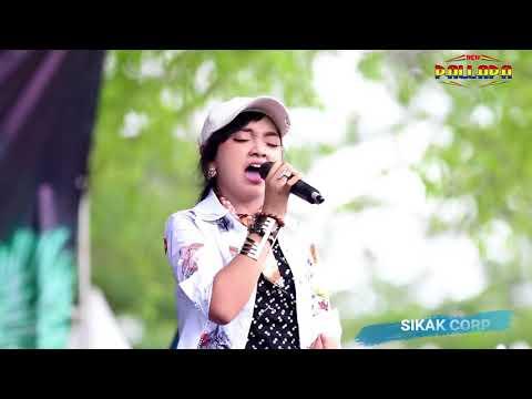 Banyu Langit Jihan Audy New Pallapa Wonosobo   YouTube