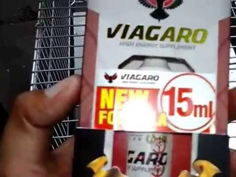 Viagaro Suplemen Energi Tinggi Untuk Kompetisi Burung Youtube