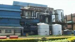 Nzoia Sugar Company Boycott