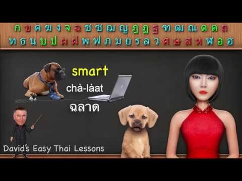 Thai Language Vocabulary 2 – big, small, tall, short, old, young (Learn Thai Language Lesson)