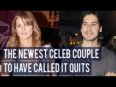 Dino Morea and Nandita Mahtani – The newest celeb couple to have called it quits!