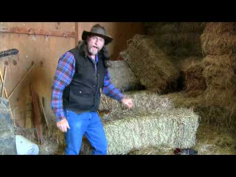 What Is A Good , Safe Square Bale Of Hay ?  Stall13.com Videos