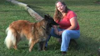 Mel Bussey On Americas Dog Trainer (1 Of 2)