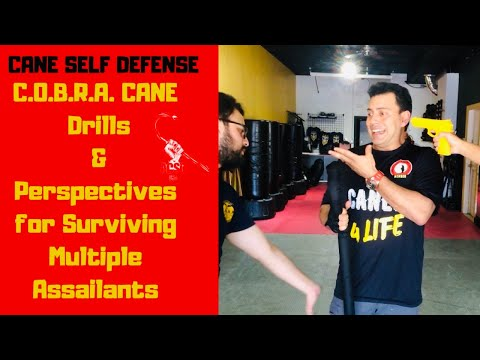 Cane Self Defense: COBRA Cane Drills & Perspectives for Surviving Multiple Assailants