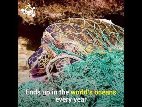 Ocean Trash 5 25 Trillion Pieces and Counting
