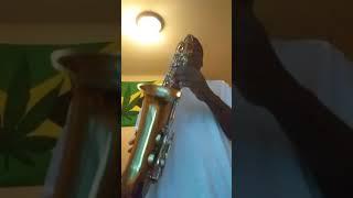 Otto link super tone master 6 Alto