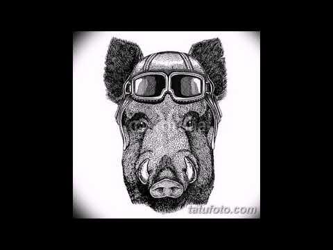 Эскизы тату свинья - примеры рисунков для тату с кабаном