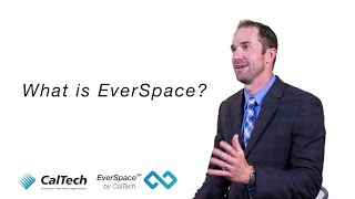 EverSpace - IT Security and Continuity